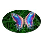 Butterfly on the Wing Magnet (Oval)