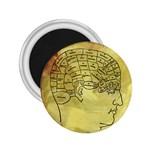 Brain Map 2.25  Button Magnet