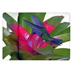 Blue Winged Hummingbird Samsung Galaxy Tab 10.1  P7500 Flip Case