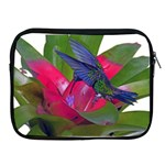 Rainbow Hummingbird Apple iPad 2/3/4 Zipper Case