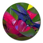 1hummingbird Flower 615 Round Mousepad