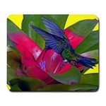 1hummingbird Flower 615 Large Mousepad