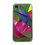 1hummingbird Flower 615 Apple iPhone 4 Case (Clear)