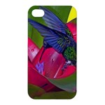 1hummingbird Flower 615 Apple iPhone 4/4S Hardshell Case