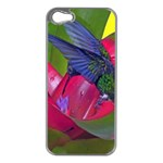 1hummingbird Flower 615 Apple iPhone 5 Case (Silver)