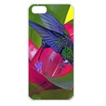 1hummingbird Flower 615 Apple iPhone 5 Seamless Case (White)