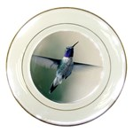 Male Ruby Throated Hummingbird In Flight Porcelain Plate