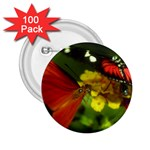 Butterfly 2.25  Button (100 pack)