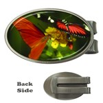 Butterfly Money Clip (Oval)