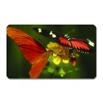 Butterfly Magnet (Rectangular)
