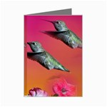 Two Hummingbirds Mini Greeting Cards (Pkg of 8)