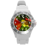 Butterfly Round Plastic Sport Watch Large