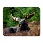 Majestic Moose Small Mouse Pad (Rectangle)