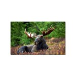 Majestic Moose Sticker 100 Pack (Rectangle)