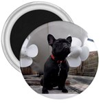 French Bulldog 3  Button Magnet
