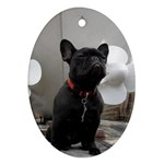 French Bulldog Oval Ornament