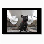 French Bulldog Postcard 4  x 6