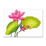 Lillies Sticker (A4)