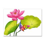 Lillies Sticker A4 (10 pack)