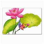 Lillies Postcards 5  x 7  (Pkg of 10)