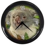 Koala Bear Wall Clock (Black)