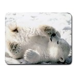 Baby Polar Bear Small Mousepad