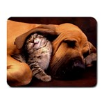 Best Friends Cat and Dog Small Mousepad
