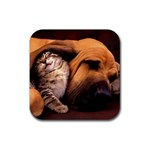 Best Friends Cat and Dog Rubber Square Coaster (4 pack)