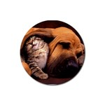 Best Friends Cat and Dog Rubber Round Coaster (4 pack)