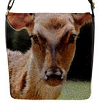 Close Up Dear With Oil Flap Closure Messenger Bag (S)