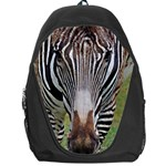 Zebra 1 Backpack Bag
