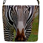 Zebra 1 Flap Closure Messenger Bag (S)