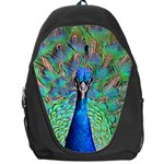Peacock 1 Backpack Bag