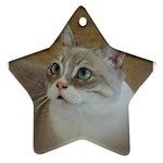 Lolo Ornament (Star)
