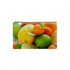 Citrus Fruits Cosmetic Bag (small)  by emkurr