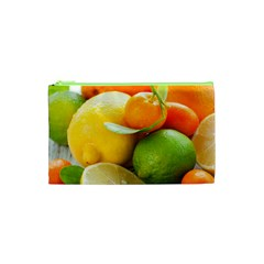 Citrus Fruits Cosmetic Bag (xs) by emkurr