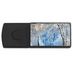 Another Winter Wonderland 1 Usb Flash Drive Rectangular (4 Gb)  by MoreColorsinLife