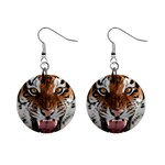 Roaring Tiger Big Cat 1  Button Earrings