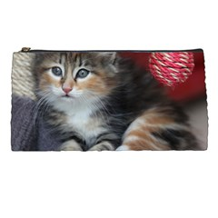 Comfy Kitty Pencil Cases by trendistuff