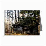 Cabin in the Woods - Leonard Harris State Park - Pennsylvania Grand Canyon - Ave Hurley - Mini Greeting Card