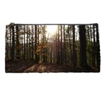 Forest - Pa Grand Canyon ~Leo Harris St Park by Ave Hurley - Pencil Case