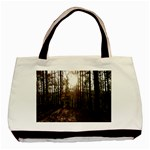 Forest - Pa Grand Canyon ~Leo Harris St Park by Ave Hurley - Basic Tote Bag