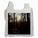 Forest - Pa Grand Canyon ~Leo Harris St Park by Ave Hurley - Recycle Bag (One Side)