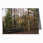 Picnic Area by East Rim - Leonard Harris State Park - Pennsylvania Grand Canyon - Ave Hurley - Greeting Card