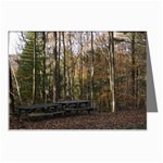 Picnic Area by East Rim - Leonard Harris State Park - Pennsylvania Grand Canyon - Ave Hurley - Greeting Cards (Pkg of 8)