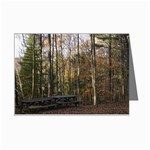 Picnic Area by East Rim - Leonard Harris State Park - Pennsylvania Grand Canyon - Ave Hurley - Mini Greeting Card