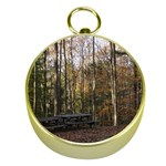 Pa Grand Canyon East Rim Trees 8 Gold Compass