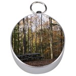 Pa Grand Canyon East Rim Trees 8 Silver Compass