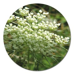 White Summer Flowers Magnet 5  (round) by picsaspassion