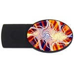 Woodstock Trip Orange Blue Fractal USB Flash Drive Oval (4 GB)